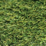 Bedminster Artificial Grass from Tildenet
